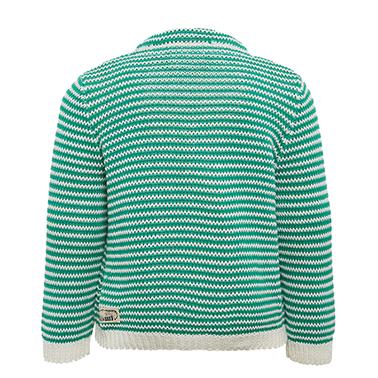Топла жилетка на райета от Tom Tailor зелена