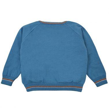 Топъл памучен пуловер в светло синьо с пингвинче и копчета